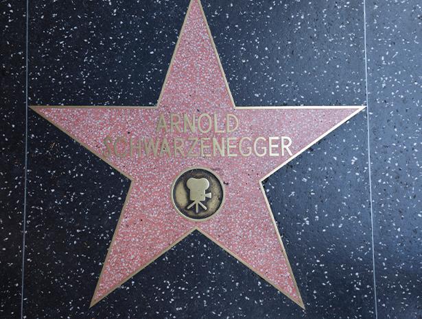 Arnold Schwarzenegger star